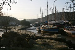 A sleepy February morning in Gweek, River Helford, Cornwall by Stocker Images