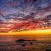Sonoma Coast by sarada_saraswati