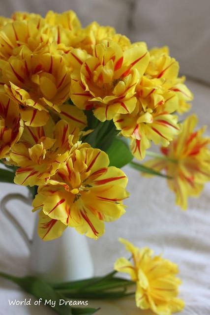 Yellow ♥