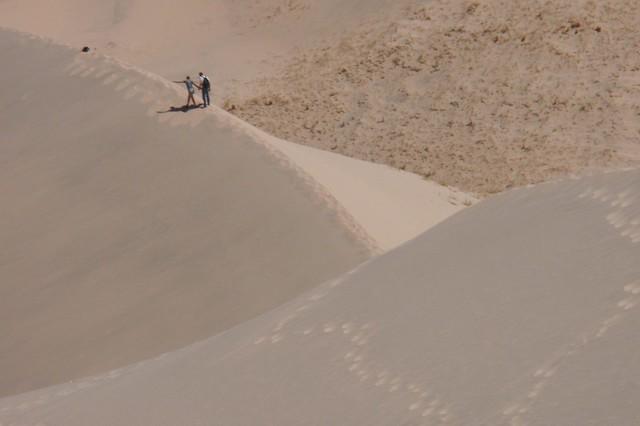 Kelso Dunes 04