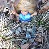 Brigett for CuteKiwi1's bntm Photo 1 Fairytales Alice in wonderland Option 3 of 5 by ღ♬☂☮♫♪ Rainbowcute100™♣♦☮☼