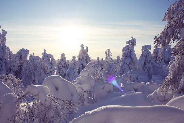 Talvi Keimiö 10