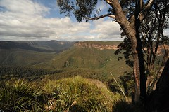 Grand Canyon to Evans Lookout, Blackheath