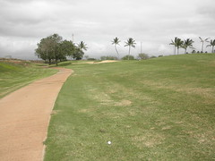 Hawaii Prince Golf Club 265