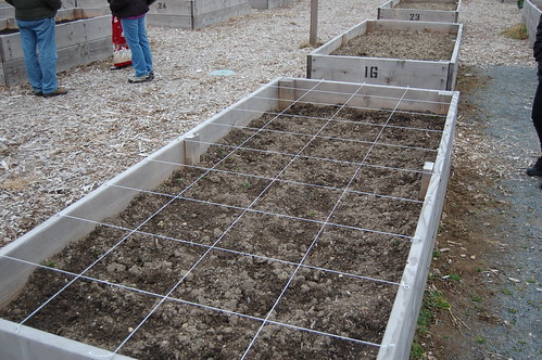 Community Garden: new grid for this year