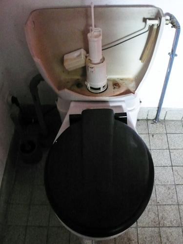 France, frozen toilet
