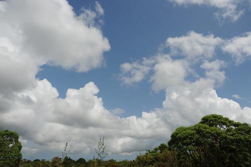 ガラパゴスの空