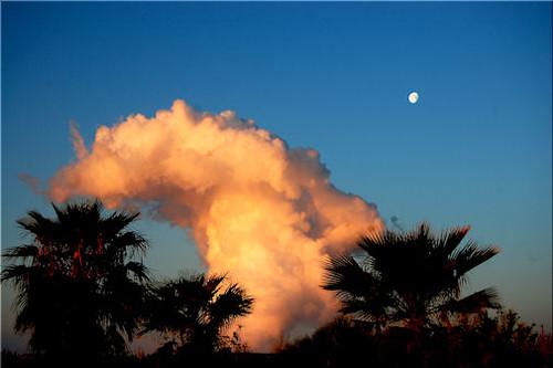 arizona steam nightsky powerplant tonopah paloverde