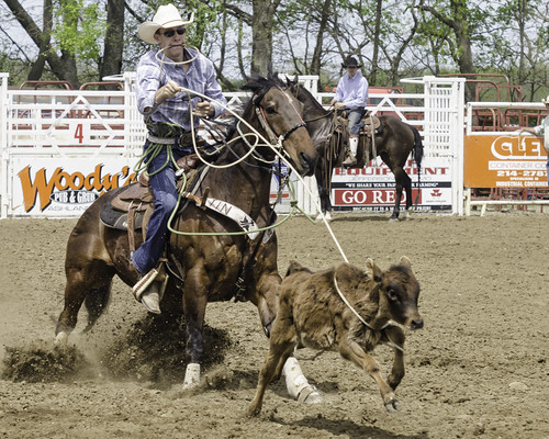 Ashland rodeo 2014 - Roping 4
