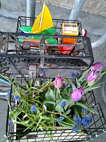 Easter goodies and spring bulbs in a bike basket