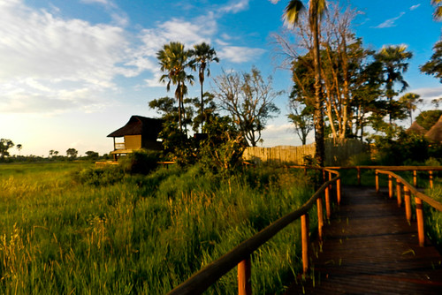 Botswana 2016 - Gunn's Camp