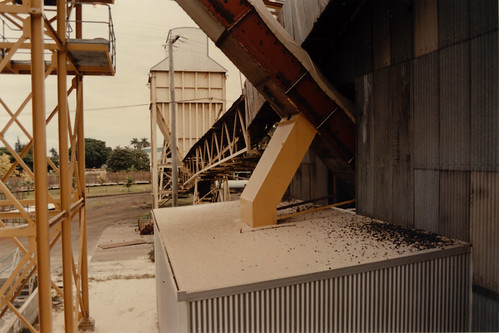 Bagasse Dust ... 26th June 1996