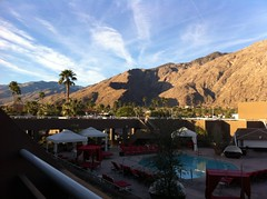 Morning in Palm Springs