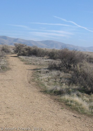 San Andreas Fault, Wallace Creek Trail, Carrizo National Monument, California