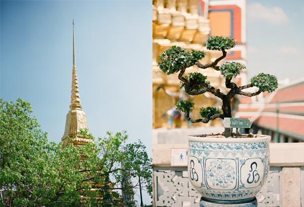 ThailandNov2011blog11.jpg