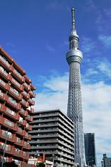 Sky Tower in Tokyo