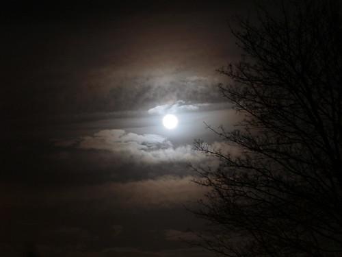 Moon - Thursday Eve.