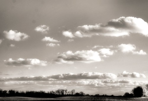 trees winter ohio sky blackandwhite bw cold field clouds landscape sony february 2012 a230 fairfieldcounty stoutsville