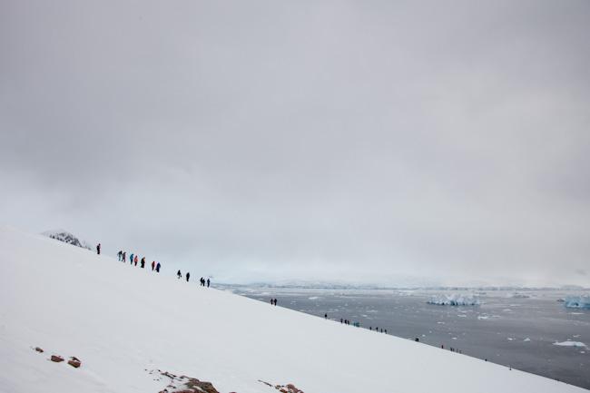 antarctica-blog-65