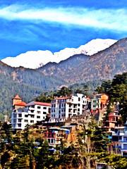 McLeod Gang, Dharamsala