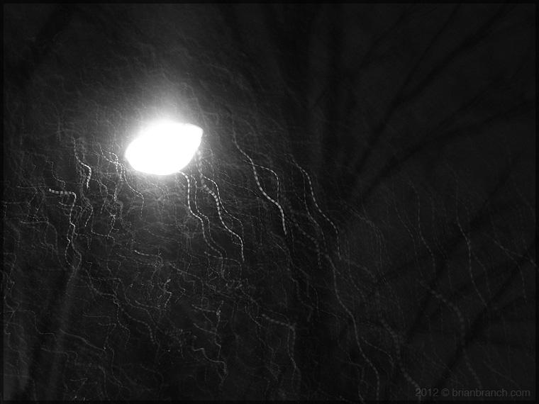 P1230163_snowflakes