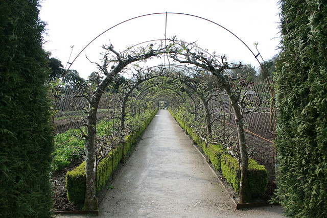 Apple Arches: Heligan is a rich source of garden ideas