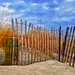Green Harbor Fence