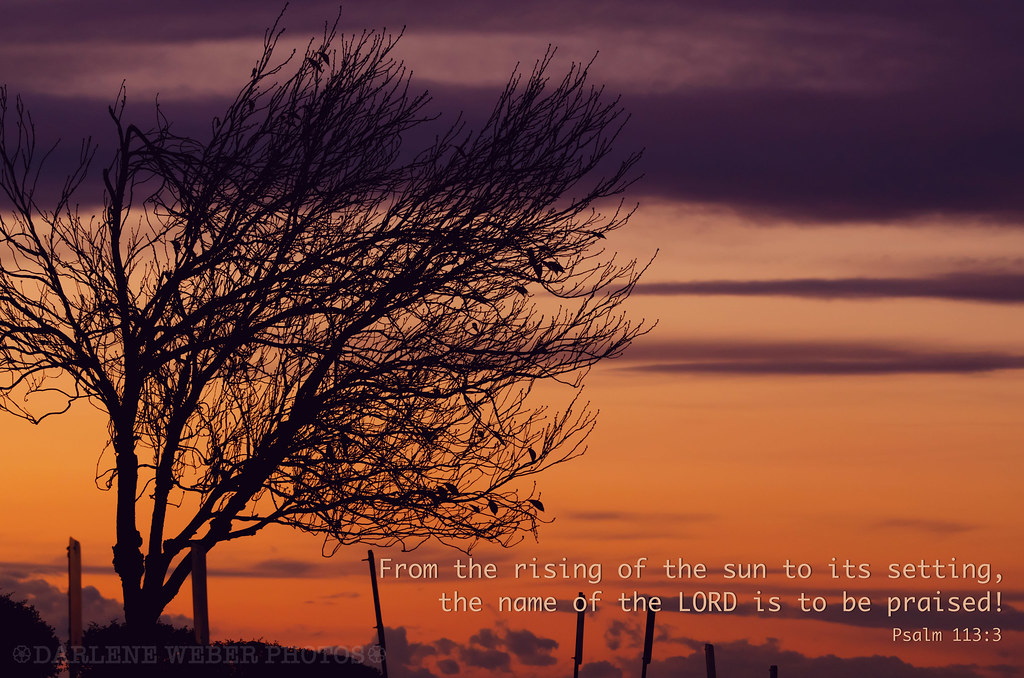 Psalm113.3web
