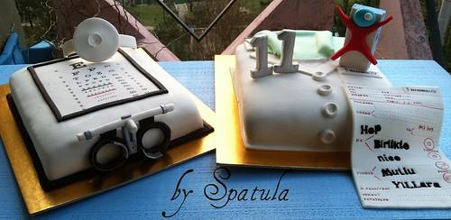 İstanbul Göz Hastanesi 11.yıl kutlama pastası by Demetin spatulasi