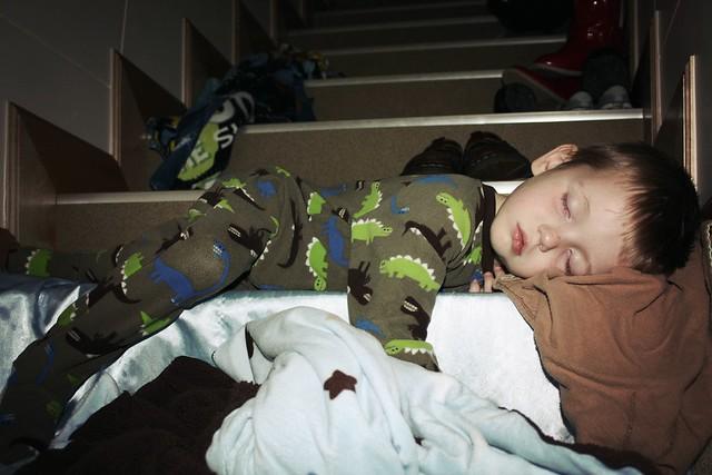 Rascalmonkey sleeps