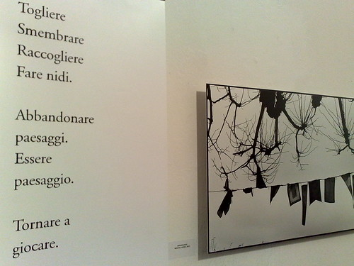 Poesie e immagini Contemporaneamente by durishti
