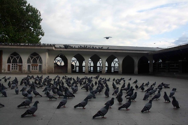 Kashmir Diary – The Sufi Soul, Srinagar