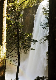 Vernal Fall 'Twixt The Trees