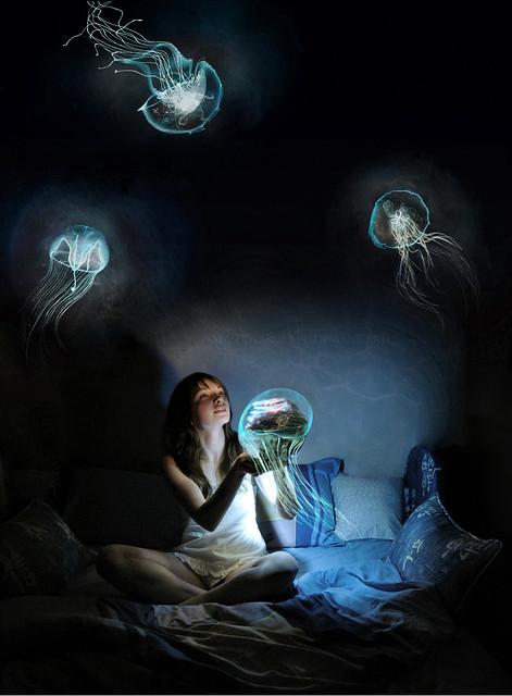 Jellyfish Dreaming