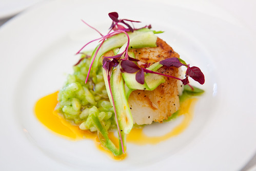 Seared scallop with risotto