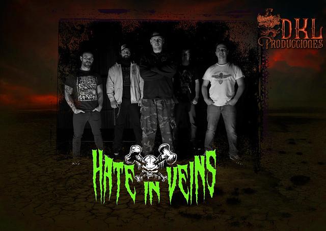 Anuncio Hate In Veins