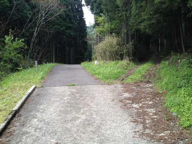 相戸岳 西ルート 林道分岐