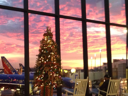 christmas sky blur tree sunrise airport iphone bdl