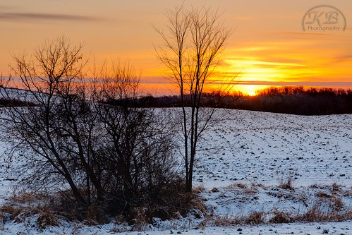 morning trees orange white snow grass clouds sunrise flickr glow bright awakening hills dirt fields deciduous hilly hdr facebook dormant