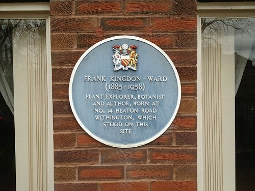 Photograph of the blue plaque erected by Manchester city council marking the place of Frank's birth. It reads; Frank Kingdon-Ward, 1885-1958 plant explorer, botanist, author. Born at no. 14 Heaton Road, Withington, which stood on this site.