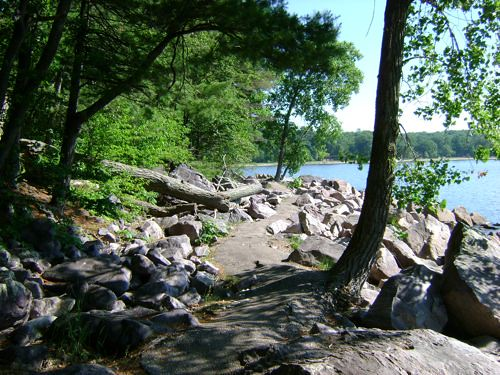 Trail Along Devil's Lake