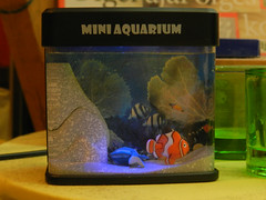 USB mini aquarium (and the dead fake fish)
