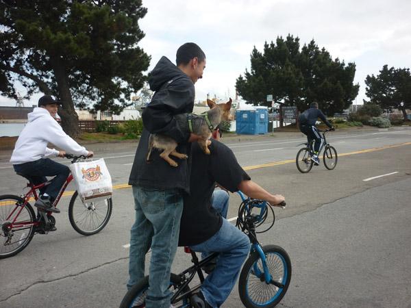 2012_0311_SundayStreets-embarcadero-SF_86
