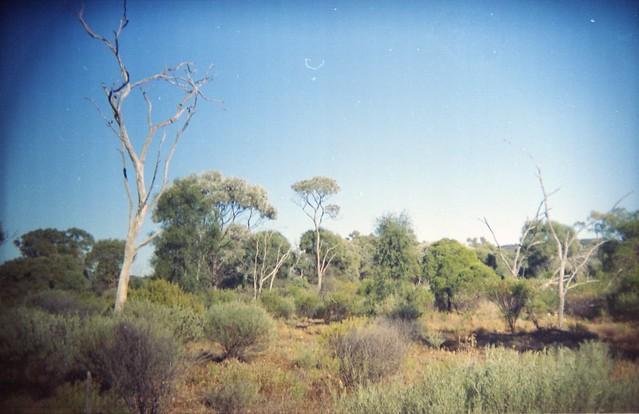 Australian Outback, Idalia National Park