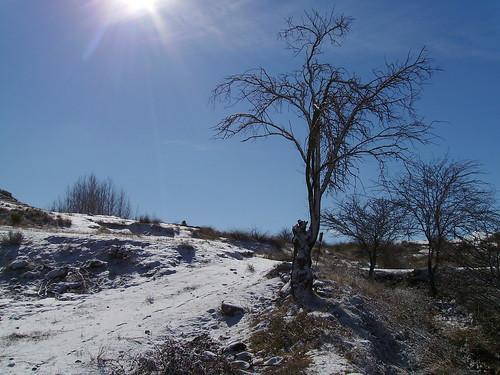 Masegoso (Albacete) nevado
