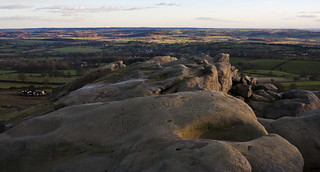 Yorkshire_Wart6