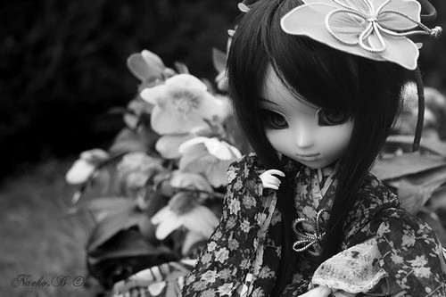 Myrtille | Pullip Youtsuzu