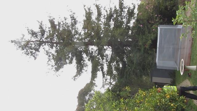 MVI_1763 Asplundh trim redwood trim away fr Edison lines