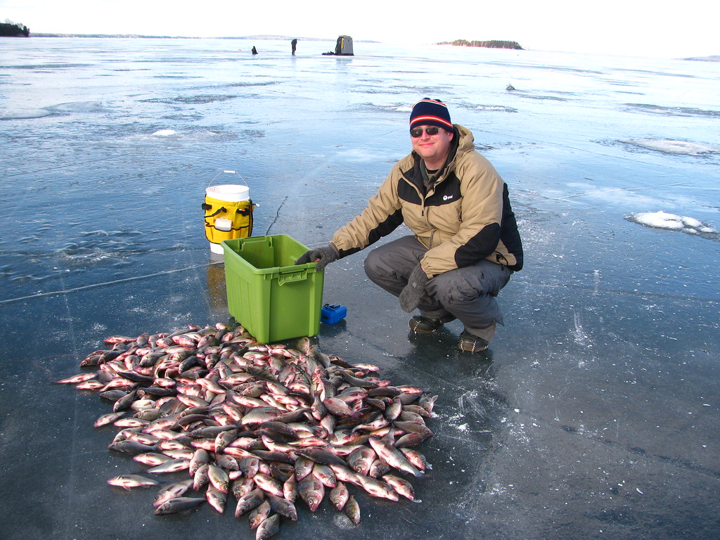Jigs for white perch for Best ice fishing jigs