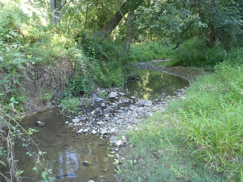 Photo set of Woodlawn Stream Restoration
